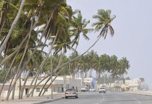 Oman Wetter Dezember
